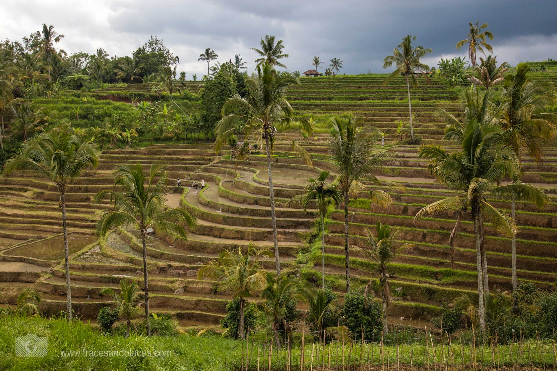 Bali - Alle Informationen für deine individuelle Balireise