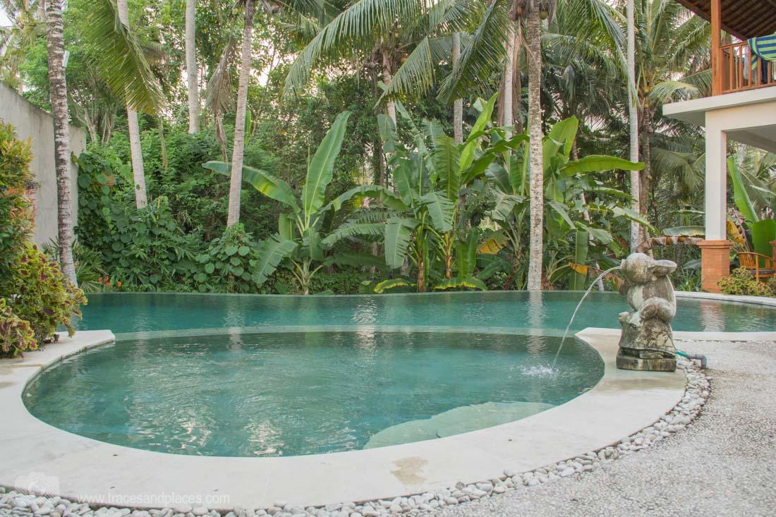 Mahanadewi Villa Pool