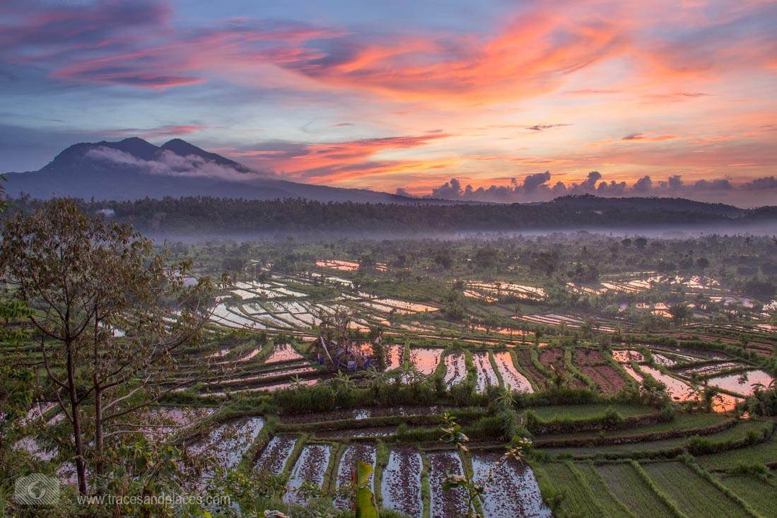 Bali - Ostbali - Tirtagangga - Reisfelder -Sonnenaufgang