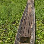 Boot mit Wasserpflanzen Inle