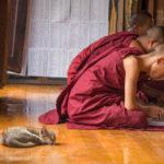 Mönche im Kloster Shwe Yan Pyay